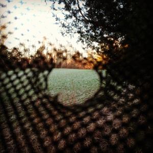 photo (47)